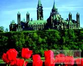 魁北克移民,移民,投资移民,魁北克省移民,魁省新政,魁北克新政,加拿大魁北克移民