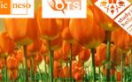 留学,荷兰留学,留学荷兰,橙色郁金香奖学金,郁金香奖学金,nesochina,OTS,方复礼,严勇兵,胡芸,Mr Jacques van Vliet,rickyan
